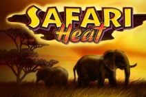 Safari-Heat-212x141